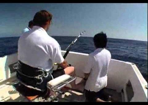 Madeira Blue Marlin Action - Balancal 2007