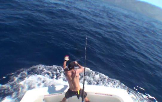 Madeira Blue Marlin
